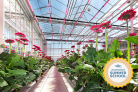 Online Summer School Greenhouse Horticulture