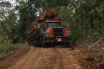 Primary road construction inside the forest, although usually an important source of carbon losses, has only a marginal impact in Costa Rica. However, wood transportation is the second largest source of GHGs