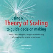 Using a Theory of Scaling (ToS) to guide decision making