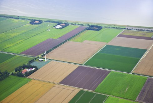 Capitalising on opportunities through enhanced cluster management: the Biobased Economy in the northern Netherlands