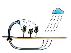 case study II_Rainwater harvesting for irrigation.jpg