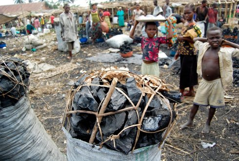 Congolese charcoal trade contributes to poverty alleviation