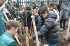 Fruit4Schools: an orchard in every schoolyard