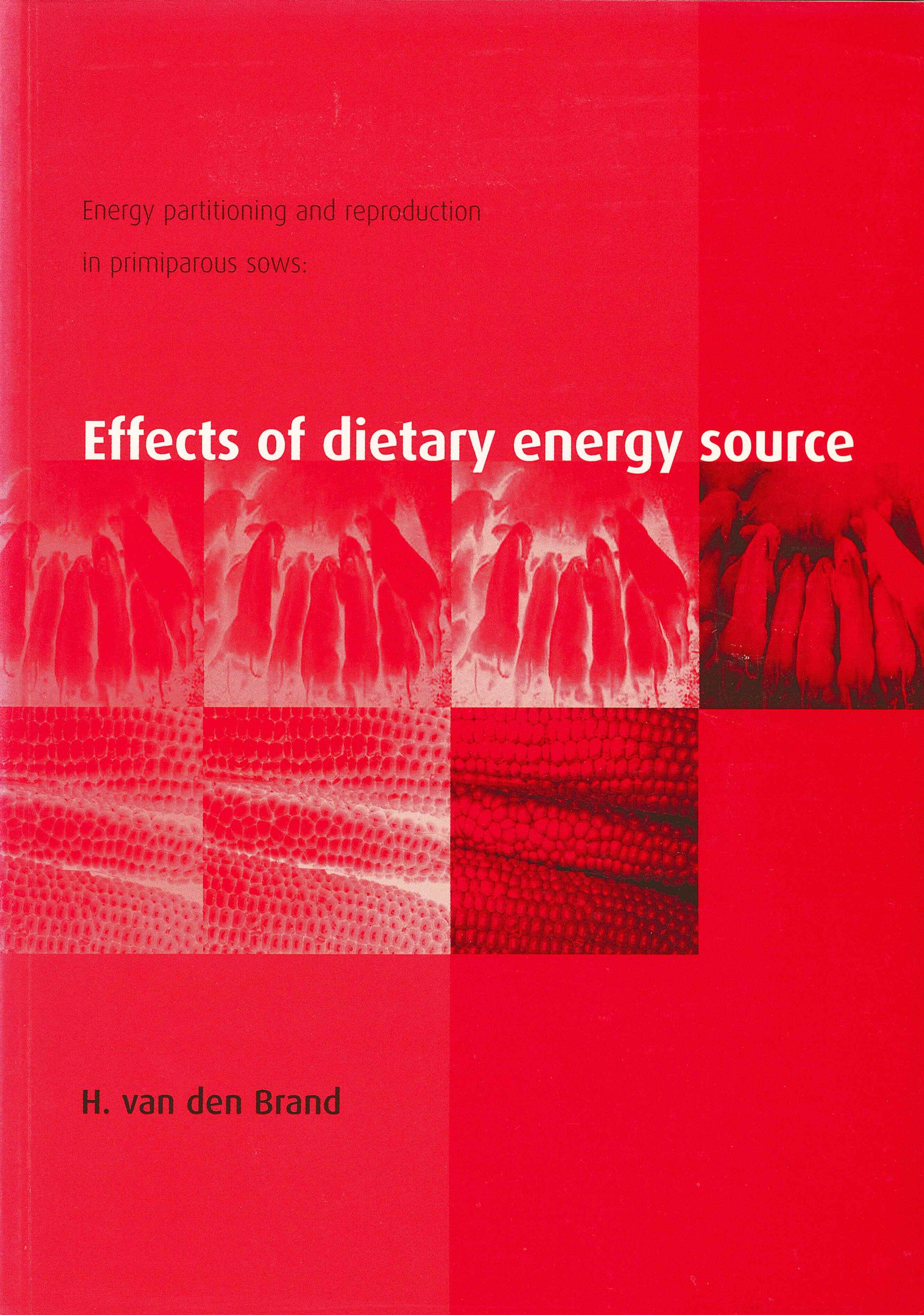 Phd thesis wageningen university | Proposal and dissertation help ...