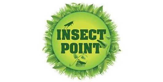 Insectpoint