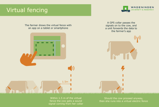 Information sheet on Virtual Fencing (Wageningen Livestock Research)