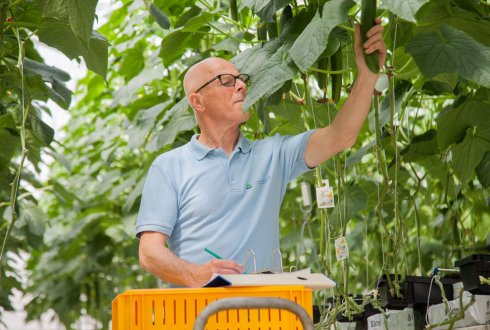 Products and services BU Greenhouse Horticulture of WUR