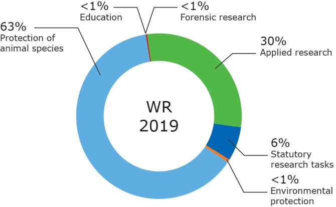 WR numbers 2019