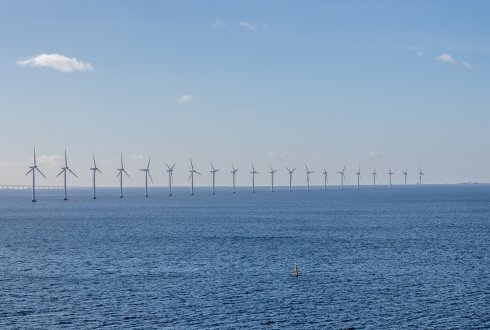 Offshore wind farms and protection of nature