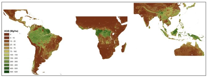 The improved pan-tropical map of aboveground woody biomass at 1 km.