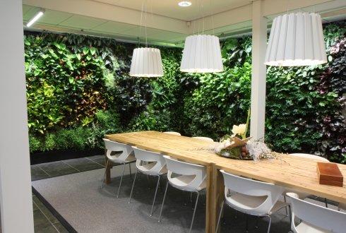 Planten Op Kantoor : Planten in kantoren en zorginstellingen kostenpost of