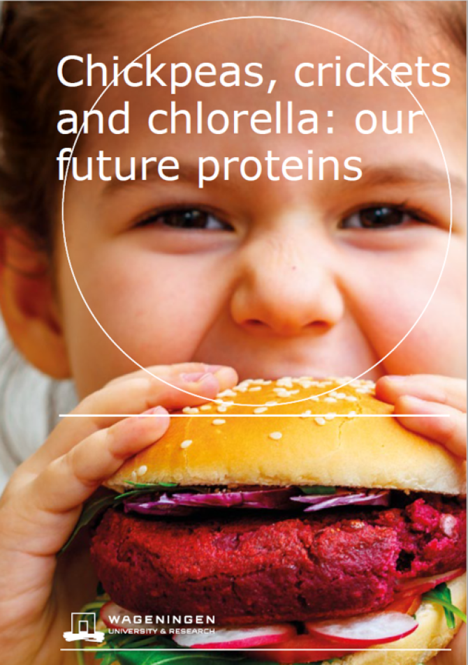 Chickpeas, crickets and chlorella: our future proteins