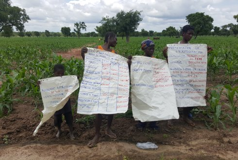 ESFIM: Collaborative action research strengthens the position of farmers in developing countries