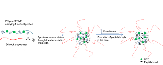 PolymericMicelles.png