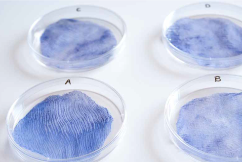 Revolutionizing the process of dyeing textiles by using natural or engineered microbes