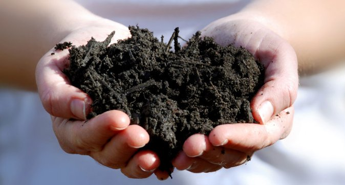 Healthy soil is essential for a biobased & circular economy