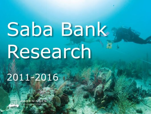 Download the brochure: Saba Bank Research 2011-2016