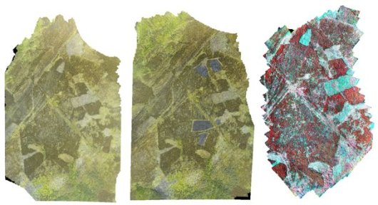 Orto-mosaic from GoPro camera (left) and false-color image from Rikola camera (right) for eastern transect of Young heathland plots at Glensaugh farm. For this transect flights were made before burning (left) and one after burning (see dark areas in middle image).