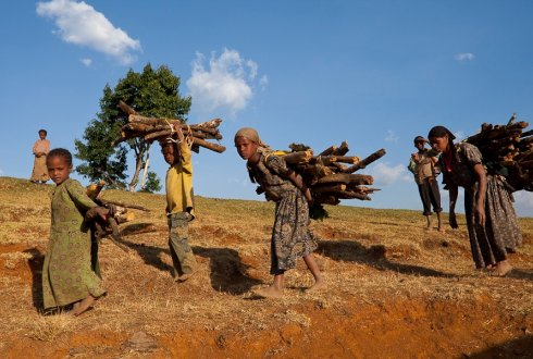 Ethiopian women and children usually spend hours collecting firewood. The stoves have helped to reduce this. Photo courtesy Bruno D'Amicis