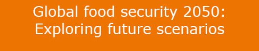 Global food security 2050: Exploring future scenarios