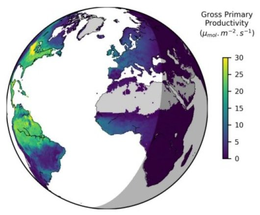 The graph shows the CO2 uptake of vegetation by photosynthesis on Earth for a period of half an hour. In the right part of the graphic, the shadow symbolizes the night when light-dependent photosynthesis comes to a standstill. (Graphics by Sujan Koirola, based on data by Paul Bodesheim, BACI science team, Image license: CC BY 4.0)