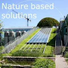 Nature based solutions.jpg