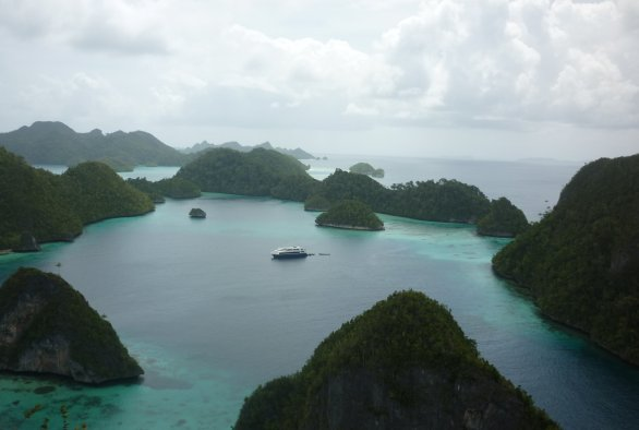 Co-governing Marine Conservation Tourism in Raja Ampat, Indonesia
