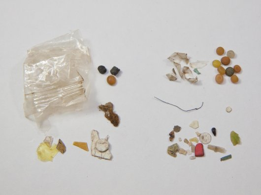 Example of plastics ingested by a fulmar. Sample NMD-2010-001 with plastics from proventricular stomach contents on left, and gizzard contents on the right. Preproduction plastic pellets for each subsample on top right are 4 to 5 mm in diameter.