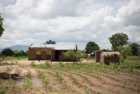 Participatory approaches to diversification and intensification of crop production on smallholder farms in Malawi