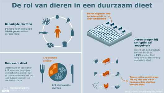 Lees het wetenschappelijke artikel 'Defining a land boundary for sustainable livestock consumption'