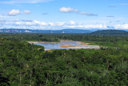 Socio-ecological analysis of multiple-use forest management in the Bolivian Amazon