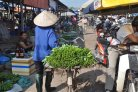 We have to eat, right? Food safety concerns and shopping for daily vegetables in modernizing Vietnam