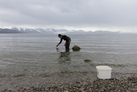 Sampling in the Arctic region. Photo: Dr. M. van den Heuvel-Greve.