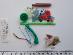 small consumer plastic debris collected by Jasmien at the beach of Westende-bad, Belgium