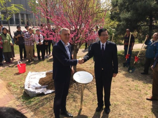 A flowering peach was planted at CAU, the agricultural university in Beijing.