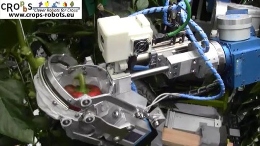 Video: prototype harvesting robot at work