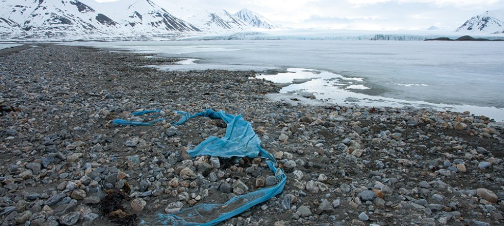 The Arctic Marine Litter Project: knowing the sources to work on solutions