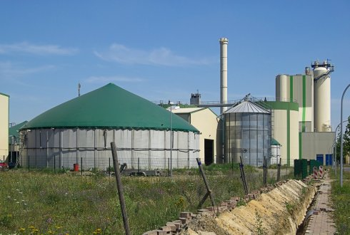 Recovery of nutrients from biogas digestate with biochar and clinoptilolite