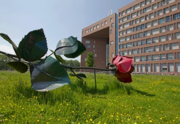 Wageningen University & Research is the third greenest university in the world
