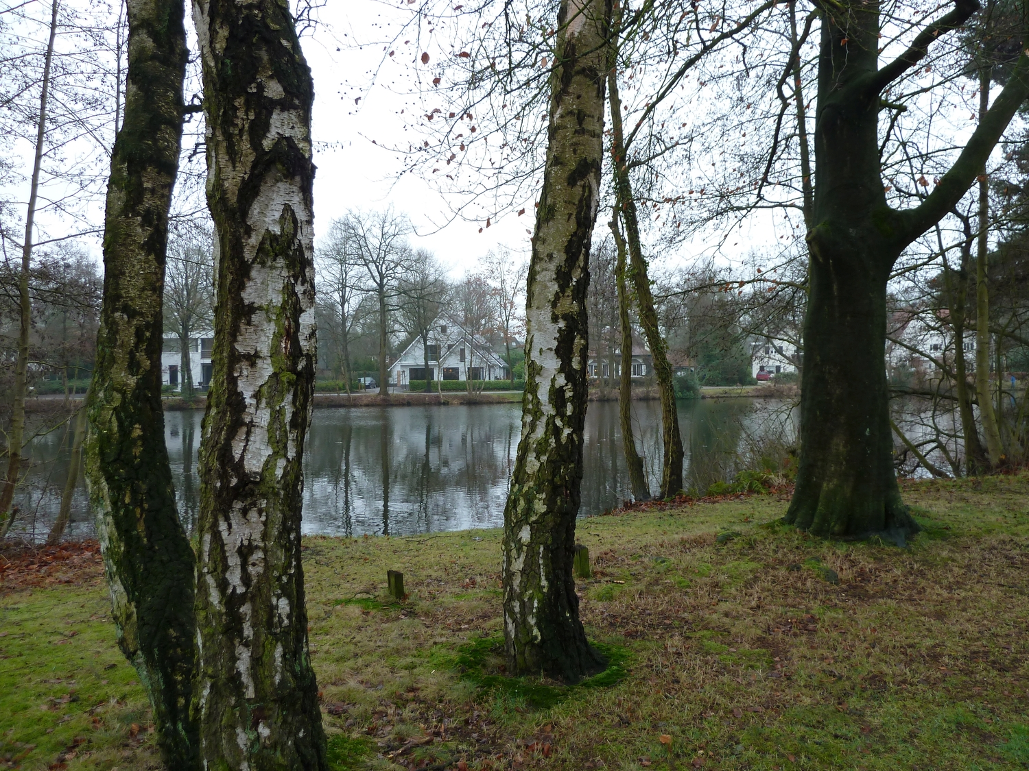 "Impression of ""Villapark 't Klompven"" in Oisterwijk, 2013 (photo: J. Karssen-Schüürmann)"