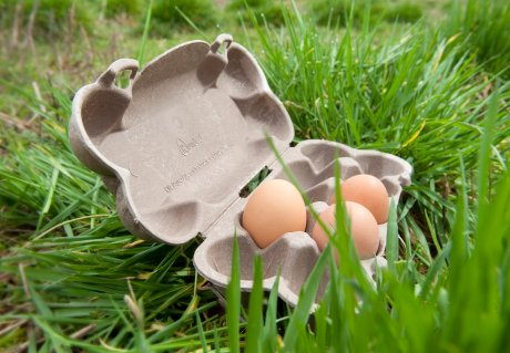 Champagne coolers and egg cartons from new biobased materials
