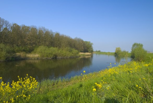 Online Course on Aquatic Effect Assessment of Plant Protection Products