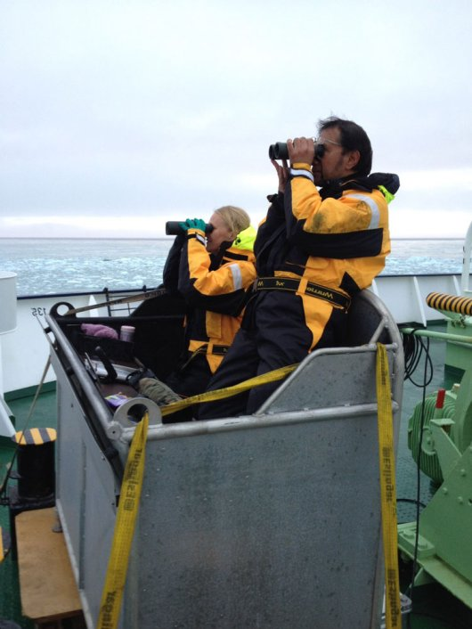 Researchers watching seabirds and cetaceans from the bird box.