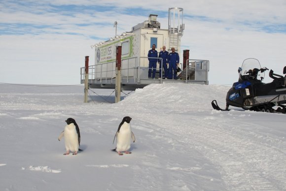 Volop productie in de Future Exploration Greenhouse op Antarctica