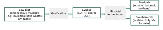 Figure. A promising process chain for the conversion of recalcitrant wastes to products, combining gasification and syngas fermentation.