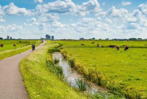 Projects Wageningen Environmental Research