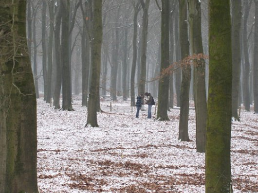 Two students taking soil samples in the Veluwe area/Picture: Jet Vervoort