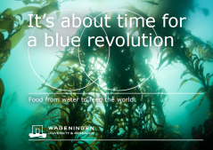It's about time for a blue revolution
