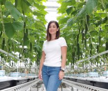 Research in Greenhouse Horticulture - Anna Peropoulou