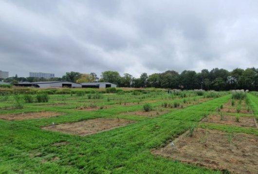 Start AGROS; bedrijven en WUR optimaliseren agro-ecologie met techniek